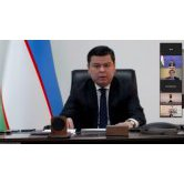 Deputy Minister of Foreign Affairs of Uzbekistan takes part in UNDP online conference