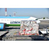 Humanitarian aid from Germany to Uzbekistan