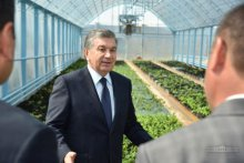 "President got acquainted with promising projects in ""Baraka meva sanoat service"" LLC"