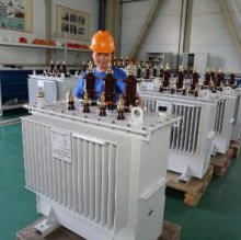 WHAT IS ADVANTAGEOUS ABOUT TASHKENT TRANSFORMERS?